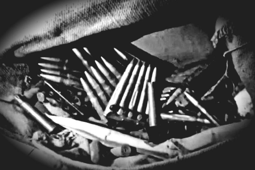 राजधानी के स्कूल में मिला कारतूस और बंदूक से भरा बैग