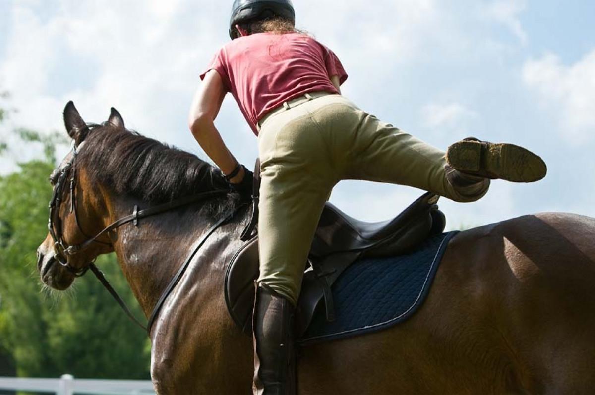 यूपी के इस वकील ने DIG साहब को लिखा पत्र- 'पेट्रोल महंगा है, घोड़ा खरीदना चाहता हूं, प्लीज घुड़सवारी सिखा दीजिए'